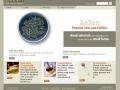 Eric Pedersen: ZaZen - Homepage - Version 3