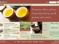 Eric Pedersen: ZaZen - Homepage - Version 4
