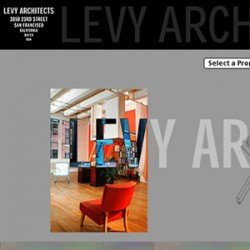 Eric Pedersen - Ross Levy Architect Website